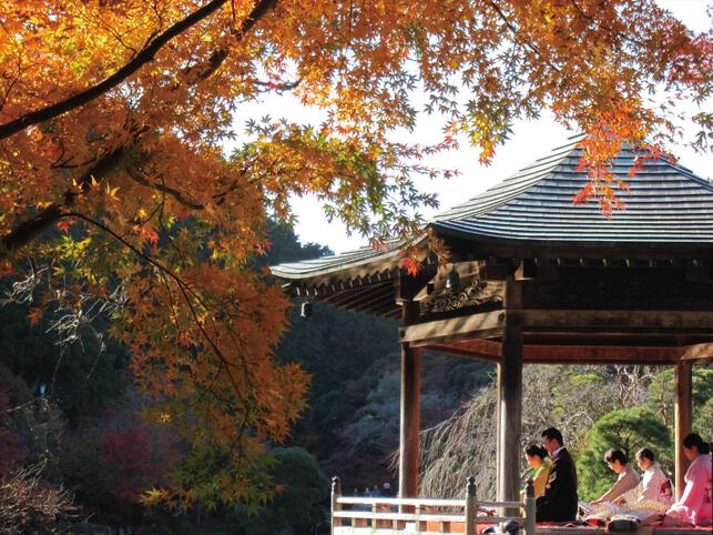 第22回 「成田山公園紅葉まつり」